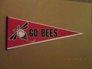 California League San Jose Bees GO BEES Vintage Defunct 1980's Baseball Pennant