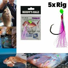 5x Fishing Rig Snapper Rigs 5/0 60lb Leader W.A Charter Special Hot Deal