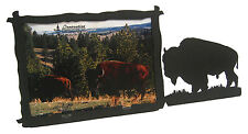 "Buffalo Bison Western Picture Frame 3.5""x5"" - 3""x5"" H"