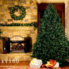 Christmas 10'x10' Computer-painted Indoor Scenic background backdrop SV160B881