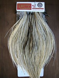 Fly Tying Whiting Bronze Rooster Midge Saddle Unique Variant #A
