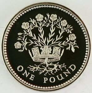 1986 Royal Mint NI Flax Plant Silver Proof £1 coin with COA, blue Box