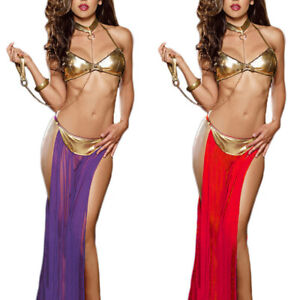 Women's Sexy Belly Dance Dress Costumes Set Bra Skirt Collar Performance Outfit