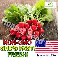 Champion Radish Seeds | Organic Non-GMO | Fresh Vegetable Garden Seeds USA