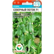 """Seeds cucumber """"Nord stream"""" F1 / Siberian Garden/ 7 PCs"""