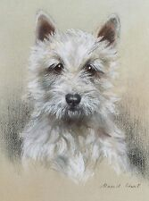 West Highland Terrier Head Study Dog Puppy Dogs Puppies Vintage Art Poster Print