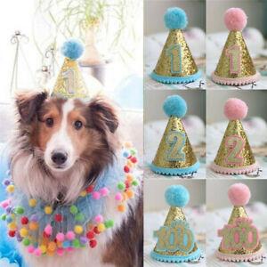 2 Colores Conjunto 6 Piezas 2 Bandanas de Cumplea/ños de Perros 2 Collares de Pajarita Suministros Fiesta Cumplea/ños de Perros para Mascota Peque/ño Mediano 2 Sombreros de Fiesta Lindos