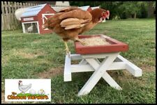 Amish ChickNic Table - A Larger Picnic Table for Chickens