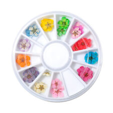 36pcs 12 Colors 3D Dry flower Colorful flower Nail art Decoration DIY Decoration