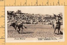RPPC Steer Bustin at the Pendleton Oregon Round-Up Rodeo  by Ellis 8816