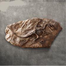 Tyrannosaurus Rex Dinosaur Fossil Mosasaurus Retro Collector Decor Cretaceous