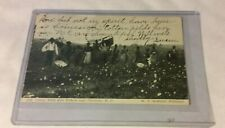 1905 Vintage Black Americana Postcard Black People picking Cotton