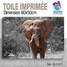 80x50cm - TOILE IMPRIMÉE- TABLEAU  POSTER DECO -ELEPHANT FELIN - EL7-01T