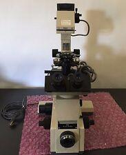 Olympus IMT-2 Binocular Microscope