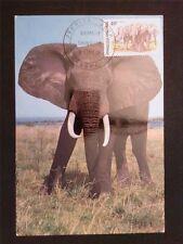 TOGO MK 1974 FAUNA ELEFANT ELEPHANT MAXIMUMKARTE CARTE MAXIMUM CARD MC CM c7748