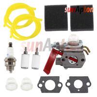 Carburetor Tune Up Kit For Homelite BC2500R D725CD D825SB F2020 F3040 Air Filter