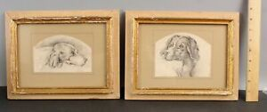 Pair 19thC Antique Setter & Pointer Hunting Dog Pencil Sketch Drawings NR