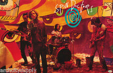FREE SHIPPING POSTER:MUSIC : SPIN DOCTORS ON STAGE #6111 LC30 T