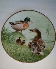 Waterbird Plate by Danbury Mallard by Eric Tenney