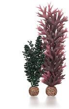 Oase Biorb seapearls & Algas Medio 18-29 Cm Acuario Tanque Decoración Ornamento Plantas