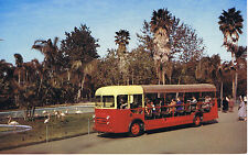Vintage SAN DIEGO ZOO California GUIDED BUS TOUR FLAMINGO EQ-1 Postcard UNUSED