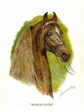 """MORGAN HORSE ART  - """"MORGAN GLORY"""" -  LTD. ED PRINT by JAMES WALLS"""