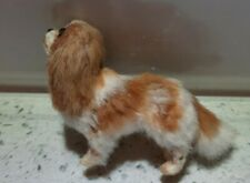 More details for annie willis king charles spaniel