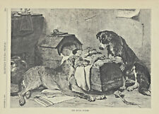 Scottish Deerhound Dog Border Collie Dog Watching Baby Antique Art Print 1887