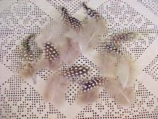 Lot of 11 Feathers from Dede Needleworks for Needlepoint Embellishments New
