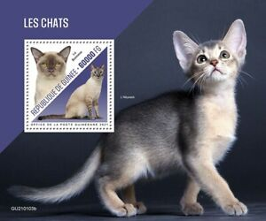 Guinea Cats Stamps 2021 MNH Burmese Abyssinian Cat Domestic Animals Pets 1v S/S
