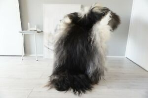 Genuine Rare Single Icelandic Sheepskin Rug   Natural Long Wool Rug    SI 592