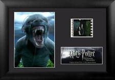 Film Cell Genuine 35mm Framed Matted Harry Potter Prisoner of Azkaban USFC6112