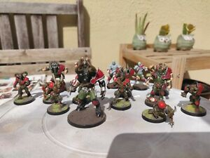 Blood Bowl Chaos Team WILLY