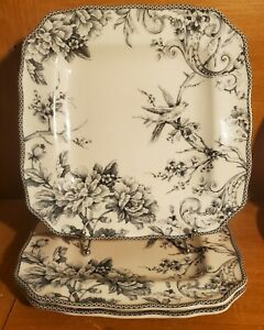 """PTS / 222 Fifth ADELAIDE GREY Dinner plate set of 3, 10 3/4"""", Porcelain. EUC"""