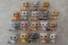 Littlest Pet Shop RARE Sitting Cats HUGE LOT #563 224 664 No 2215 300 521 LPS