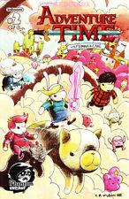 ADVENTURE TIME #2 WITH FIONNA & CAKE PHANTOM VARIANT COVER BOOM COMIC BOOK 1