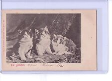 VINTAGE 3 KITTENS CATS POSTCARD UNDIVIDED BACK #713 J.H. SCHAEFER AMSTERDAM 1900