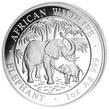 2007 1 oz Silver Somalia Elephant Coin BU Condition! PLACED IN AIRTIGHT CAPSULE!