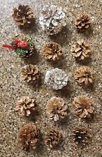 "PINE CONES 1"" to 2-1/2"" 15 CT CRAFTS MULTI Hobby Christmas Holiday Wedding Deco"
