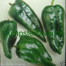 Poblano Ranchero Pepper Organic Heirloom 15 seeds the real chili pepper NON-GMO