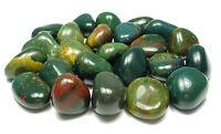 TUMBLED - (1) LARGE BLOODSTONE Crystal w/Description Card- Healing Stone Reiki