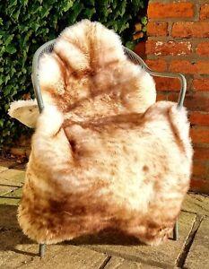 XXXXL British Cream and Brown Wolftip Sheepskin Rug - 140cm by 80cm A++ (4476)