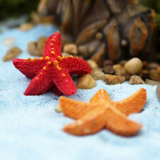 Starfish Miniatures Fairy Garden Micro Landscapes Resin Crafts Accessories EF
