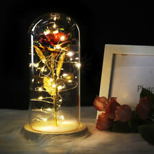 Beauty And The Beast Enchanted Red Rose In Glass Dome LED Lamp Christmas Gift