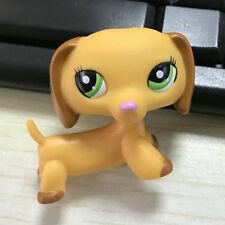 Littlest pet shop Brown yellow Dachshund dog LPS #2597 mini Action Figures