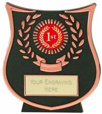 Emblems-Gifts Curve Bronze 1st Plaque Trophy With Free Engraving