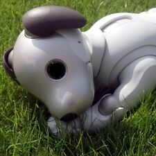 SONY AIBO | ERS-1000 - ROBOTER HUND MIT ADDON - 2019 EDITION - EXPRESS PREORDER
