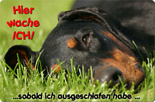 DOBERMANN - A4 Metall Warnschild SCHILD Hundeschild Alu Türschild - DBM 03 T15