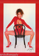 LOT OF 2 POSTERS: SANDI KORN ON CHAIR-SEXY FEMALE MODEL -FREE SHIP #3060   LW8 K