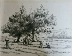Maximilien Luce -Drawing - Forest - French Impressionist /Catalogued Artist